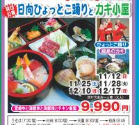 宮崎牛&海鮮丼&海鮮焼&日向ひょっとこ踊りとカキ小屋